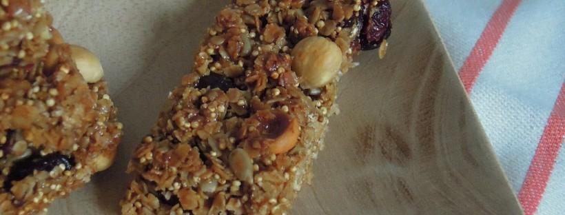 recette-saine- barres de céréales -cranberries